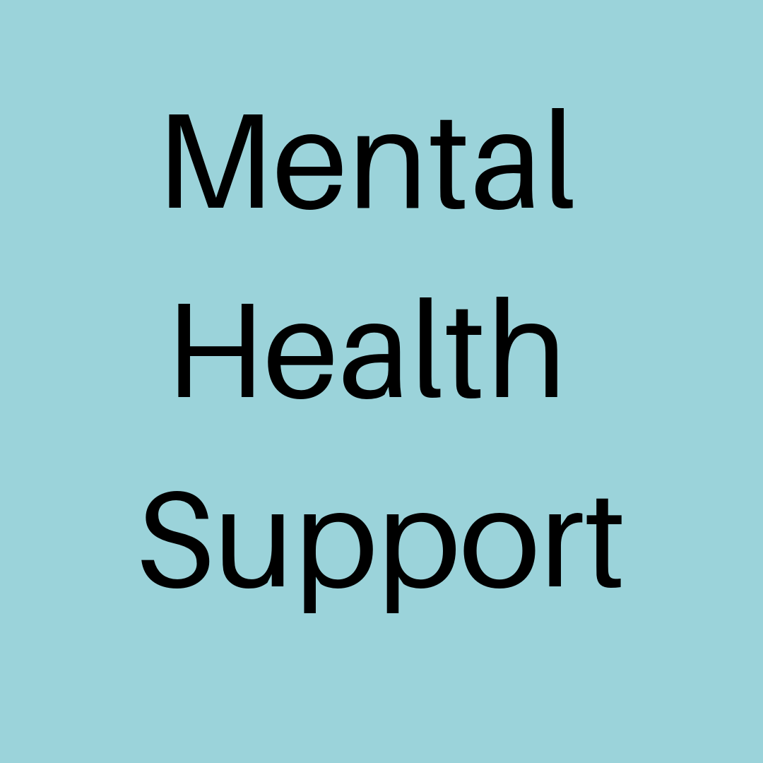 Mental Health Support button.png